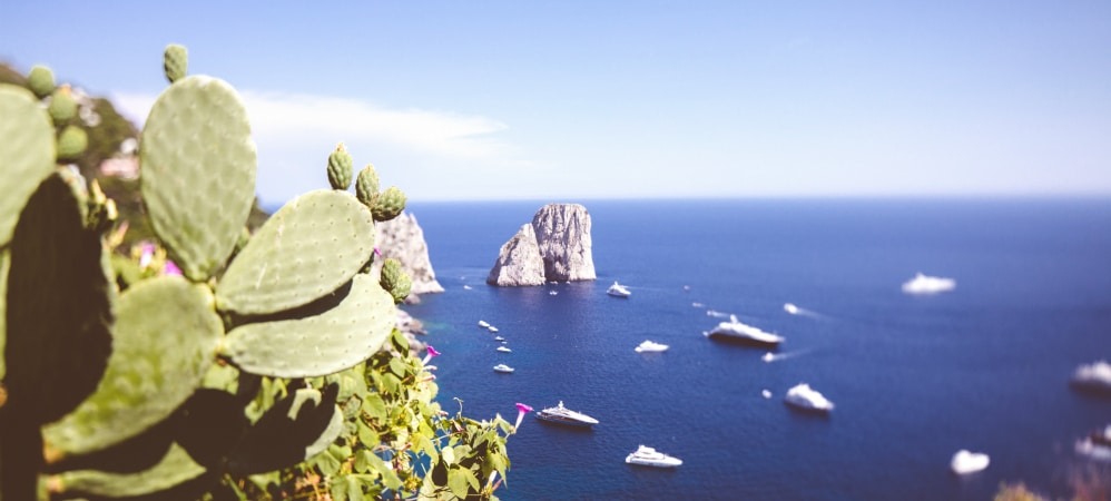 Get married on Capri insand