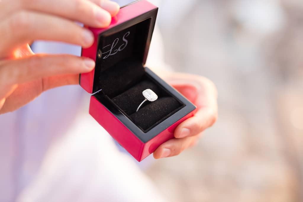 Romantic proposal in Capri